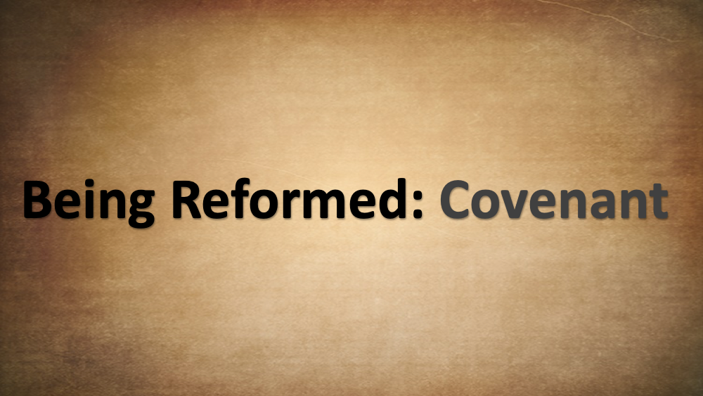 Being Reformed - Covenant Image