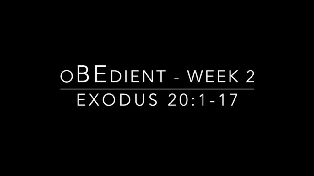 oBEdient - Week 2 Image