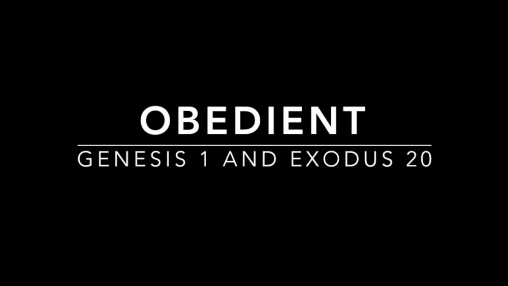 oBEdient - Week 5 Image