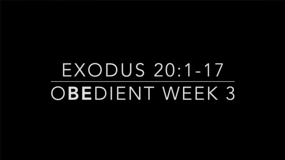 oBEdient - Week 3 Image